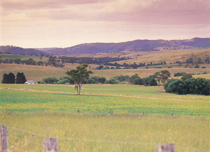 Things to do in the Bathurst countryside