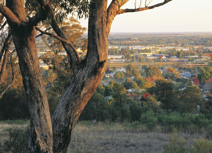 Things to do in Griffith, located in the Riverina Region.