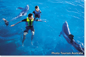 Swimming with dolphins at Sea World