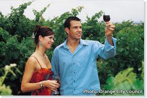 Wine tasting, Orange